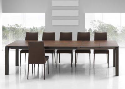 table enix allongee